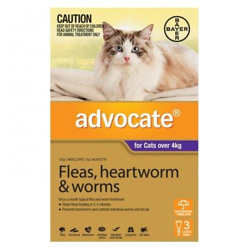 Advocate Large Cat (4kg+)
